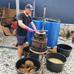 Отжим винного материала при производстве вина винодельней Чернова в Анапе